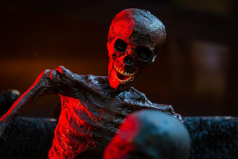 web-halloween-073-2014_10_31_1d_4830-031