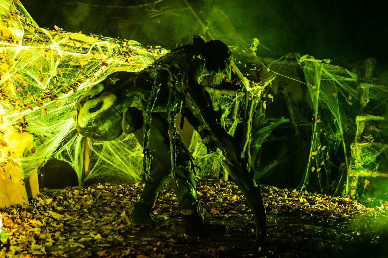 web-halloween-232-2014_10_31_1d_5031-029
