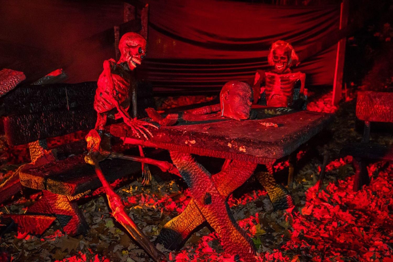 web-halloween-269-2014_10_31_1d_5055-023