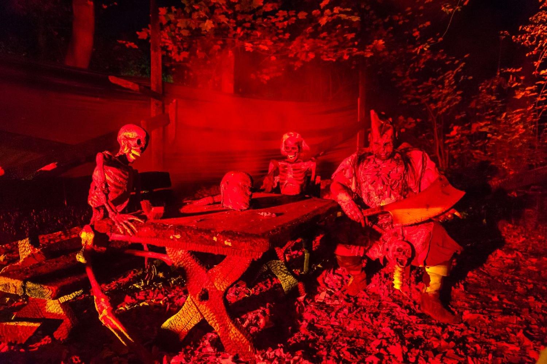 web-halloween-341-2014_10_31_1d_5184-021