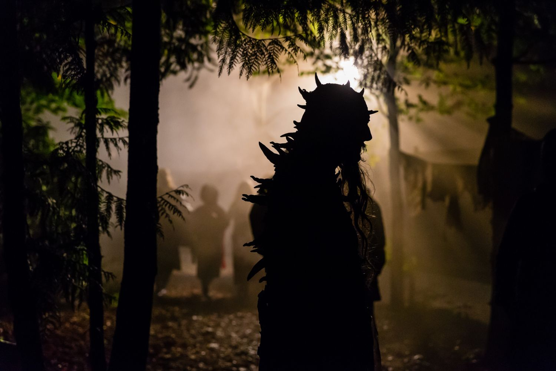 web-halloween-480-2014_10_31_1d_5401-017