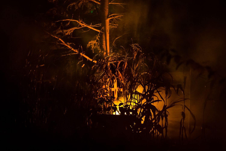 web-halloween-502-2014_10_31_1d_5417-016